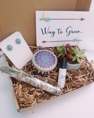 Way to Grow congratulation gift box, Send a gift, care package, live succulent gift, turquoise earrings, birthday gift, friendship gift set
